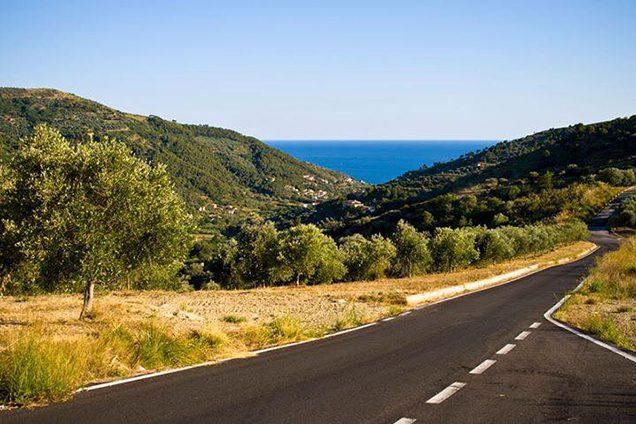 Strada statale con vista sul comune di Montecorice (Facebook).