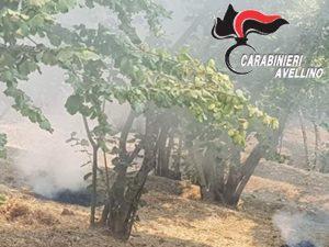 Forino, tre persone denunciate: stavano bruciando sterpaglie nei boschi