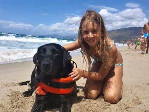 Palinuro, la piccola Caterina salvata in mare dal cane 'bagnino' Lux