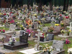 Degna sepoltura a cani e gatti: a Paestum arriva il cimitero per animali domestici