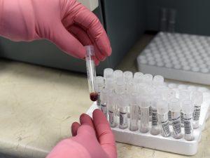 Influenza suina a Nocera Inferiore, contagiati 3 infermieri