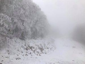 Meteo, prima neve in Campania: lo spettacolo bianco del Lago