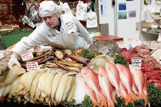 Pesci in estinzione entro il 2048 ecco cosa sta accadendo nei nostri mari - Pesci comuni in tavola ...