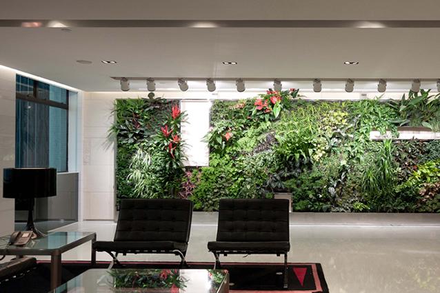 Piante Ufficio Ossigeno : Piante per portare la natura nel vostro ufficio arreda con sara