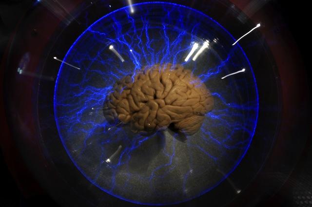 L'aglio e l'invecchiamento del nostro cervello