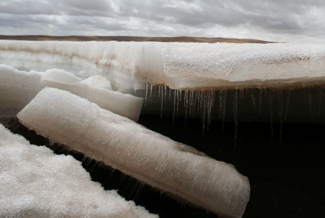 Un virus vecchio di 30.000 è stato scoperto nei ghiacci siberiani
