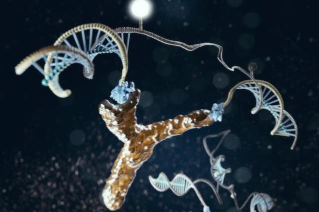 DNA e HIV