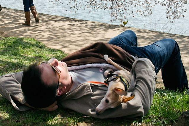 Dormire con il proprio cane o gatto fa bene o male?