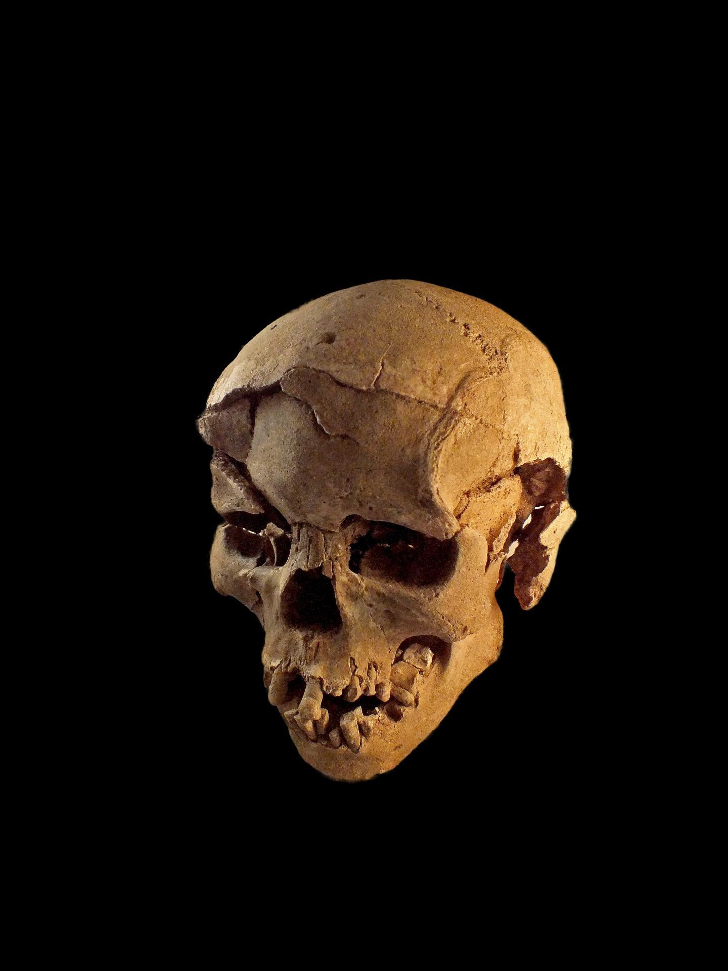 La più antica testimonianza di un massacro ha 10.000 anni