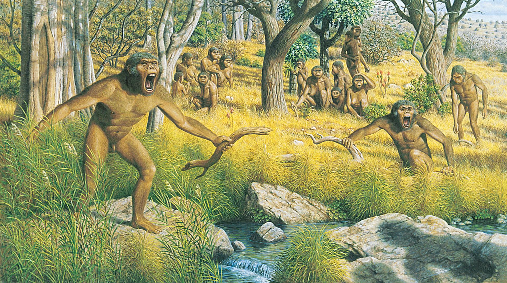 Un nuovo fossile di Australopiteco ritrovato nella Rift Valley