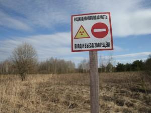 Chernobyl 30 anni dopo: restano le radiazioni, ma tornano gli animali