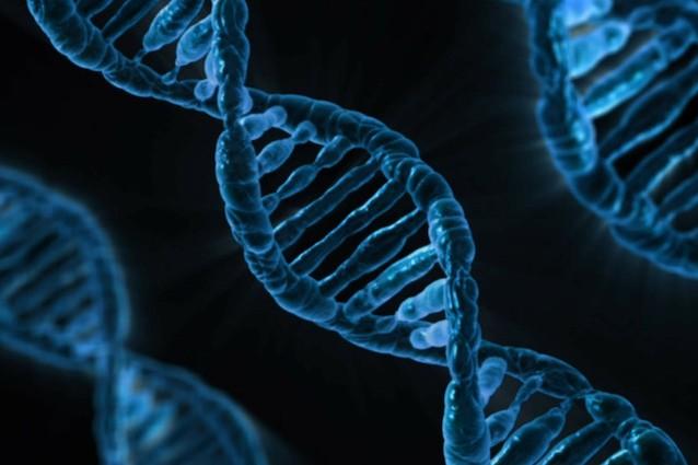 """Il """"super"""" DNA che protegge da alcune malattie genetiche"""