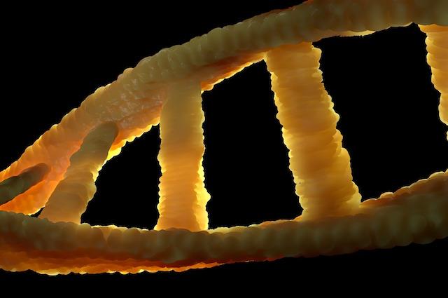 """Leucemia Mieloide Acuta: un paziente su due ha DNA """"alieno"""" responsabile della malattia"""