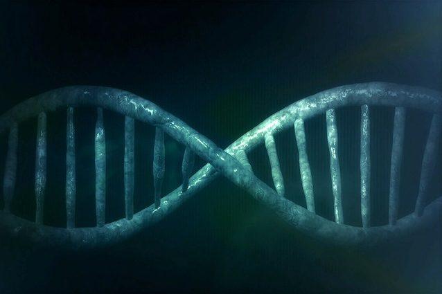 DNA modificato contro il cancro: è andata bene la prima iniezione su un paziente umano