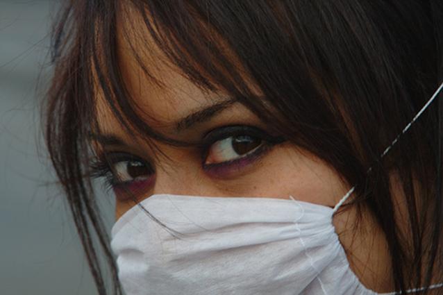 Nel 2009 l'Oms ha parlatodi pandemia per l'influenza A H1N1, le cui varianti sono aviaria e suina