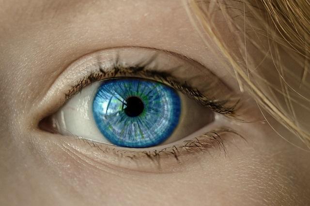 Il nostro cervello prevede ciò che stiamo per vedere: ecco perché il mondo non va a 'scatti'
