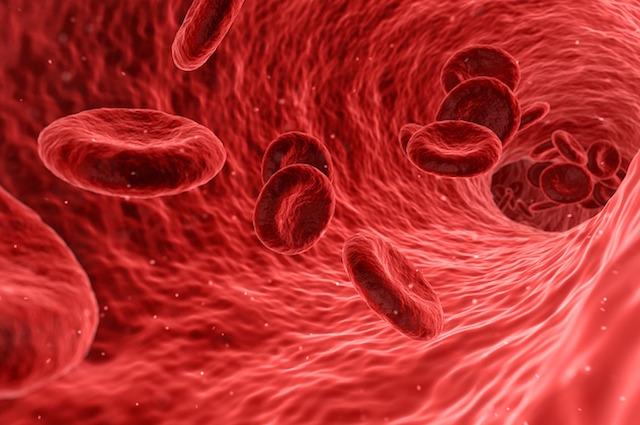 Le super cellule del sangue che inducono il cancro al suicidio: ecco come fanno