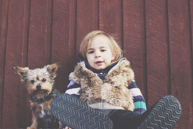 Bambini e cani sono simili quando si parla di intelligenza sociale
