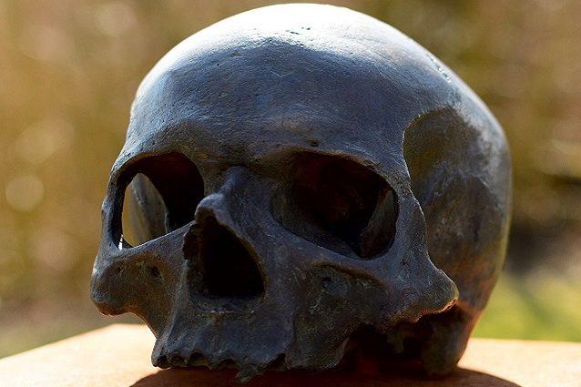 cranio cover
