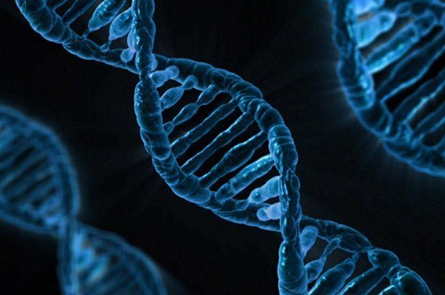 Battaglia legale per la tecnica di editing genomico CRISPR/Cas9 finisce in parità, per ora