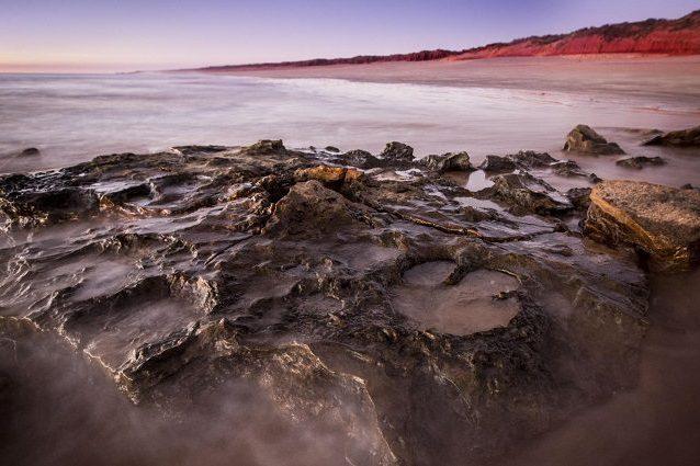 Jurassick park in Australia: scoperte le impronte di 21 dinosauri