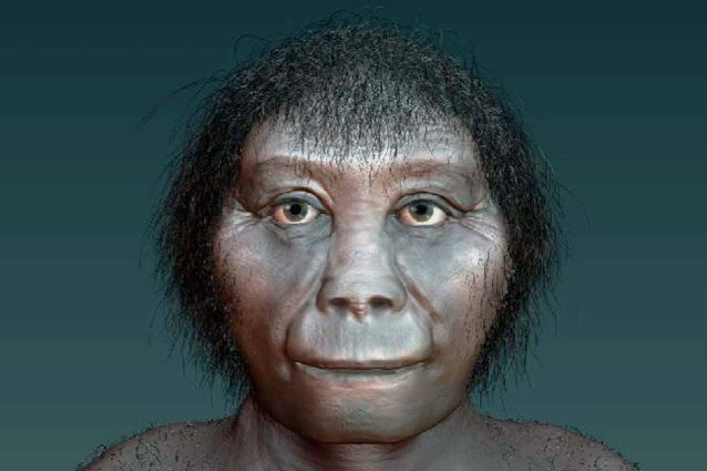 Gli Hobbit sono 'esistiti' e vivevano in Indonesia: scoperto da chi si sono evoluti