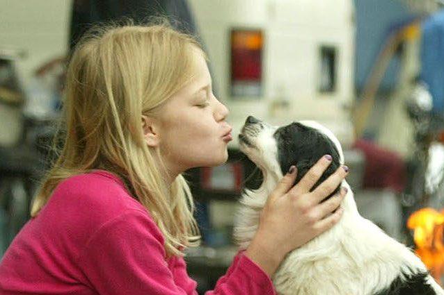 I cani fanno bene alla salute dei bambini: fortificano i batteri contro allergie e obesità