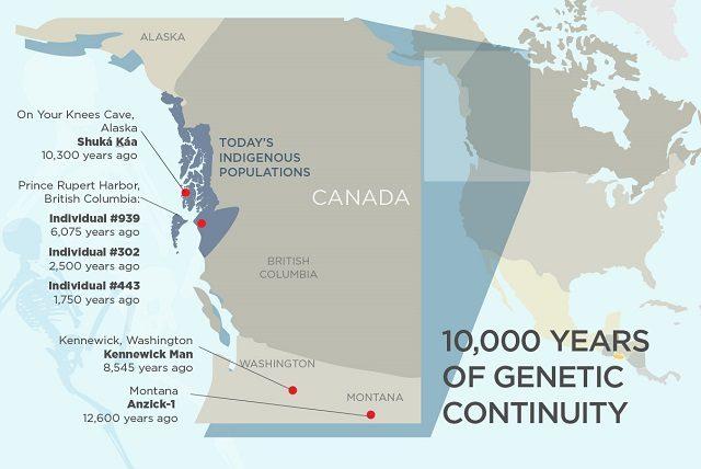 La continuità genetica dellee popolazioni nordamericane durata 10mila anni: credit Università dell'Illinois https://news.illinois.edu/blog/view/6367/483675#image-2