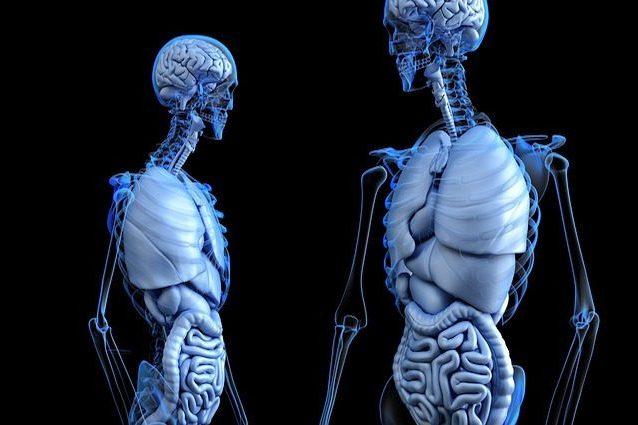 Tumore al polmone: in prima linea il farmaco che riduce del 40% il rischio di morte