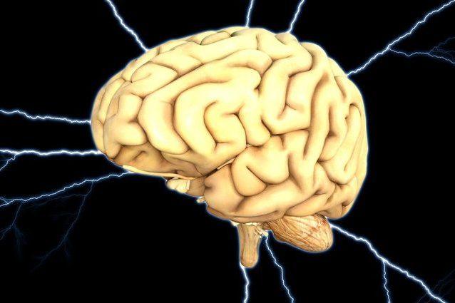 Una regione del cervello influenza la nostra paura per il futuro incerto