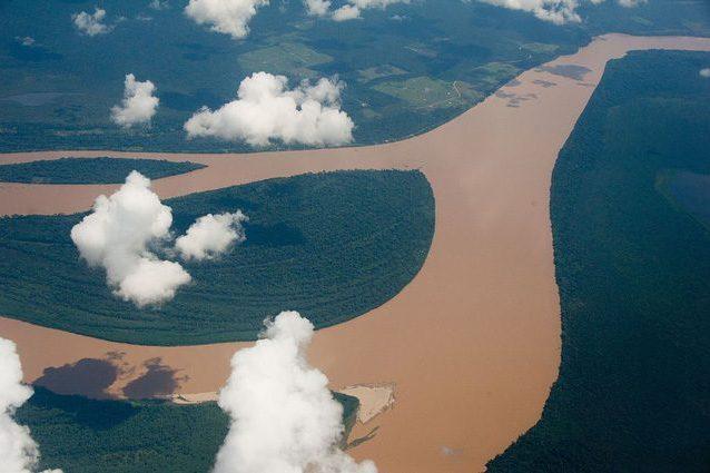 La Foresta Amazzonica fu sommersa dal mare? Scoperti fossili marini e plancton nel terreno