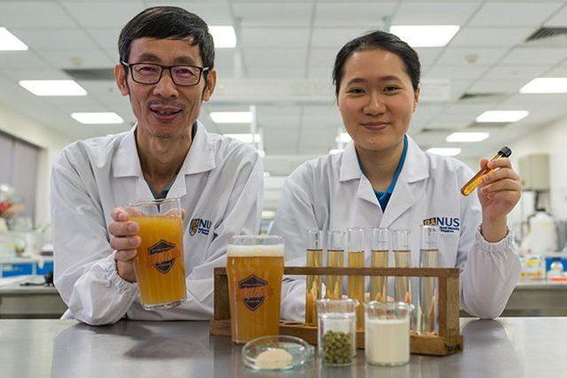 Birra probiotica che fa bene all'intestino: la scoperta arriva da Singapore