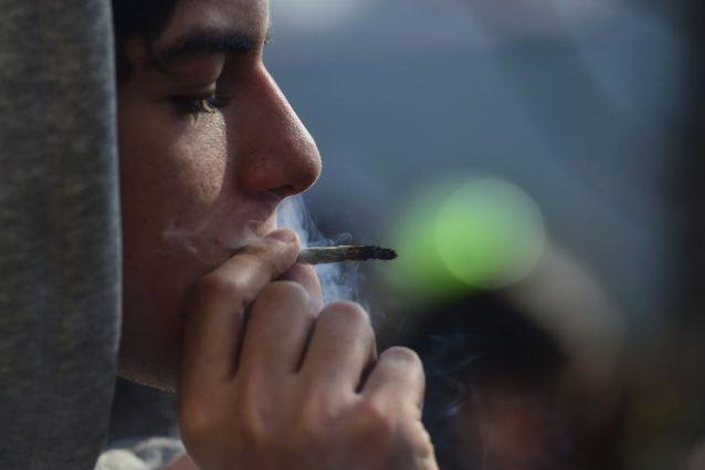 I giovani italiani sono secondi in Europa per consumo di cannabis: le droghe preferite