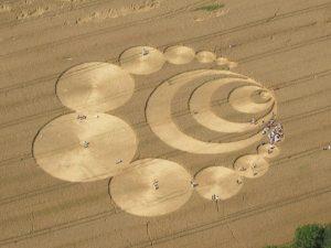 Cerchi nel grano, ecco perché si tratta sempre di ingegno umano