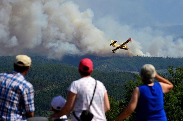 Incendi, Italia avvolta dalle fiamme: in un mese persi gli ettari di boschi dell'intero 2016