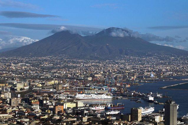 Vesuvio, incendio devastante: animali e piante a rischio. Ecco chi popola il parco