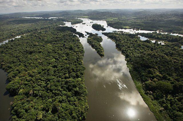 Foresta Amazzonica salva: stop allo sfruttamento minerario (per ora)