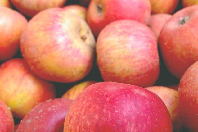 "Perdita di capelli, integratori a base di mele contro calvizie"""