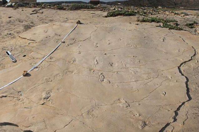 Perché questo hominino trovato a Creta potrebbe ribaltare la storia dell'evoluzione umana