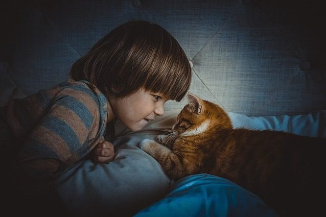 I bambini che nascono con un gatto in casa rischiano meno di avere l'asma