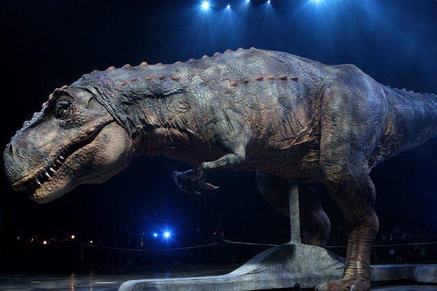 Il T-rex usava le sue 'braccine' per squartare le prede