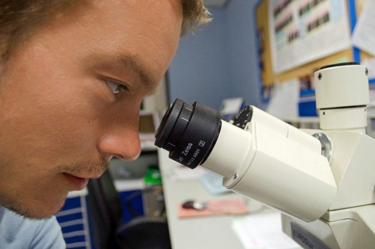 cdk12 trattamento del cancro alla prostata olaparib