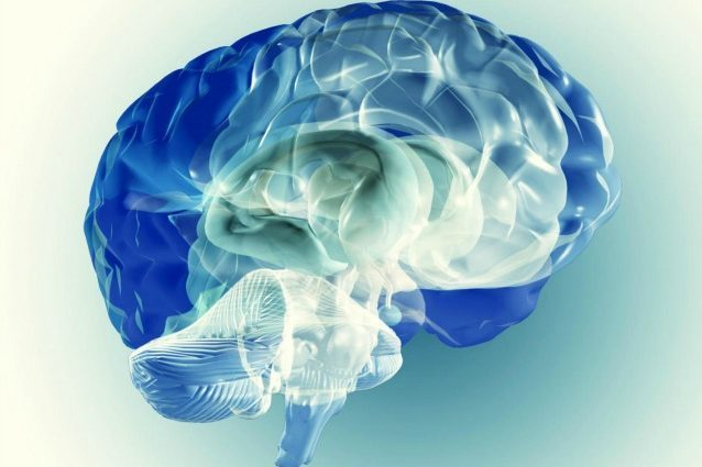 Encefalopatia grave, deficit neurologici ed epilessia: è colpa di un gene