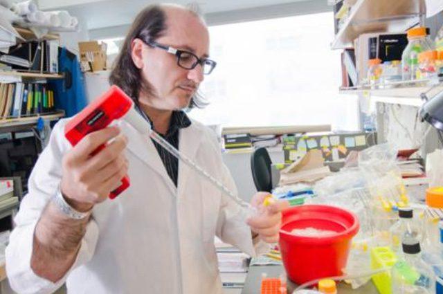 Meccanismo che uccide i tumori aggressivi svelato da team guidato dall'italiano Davide Ruggero