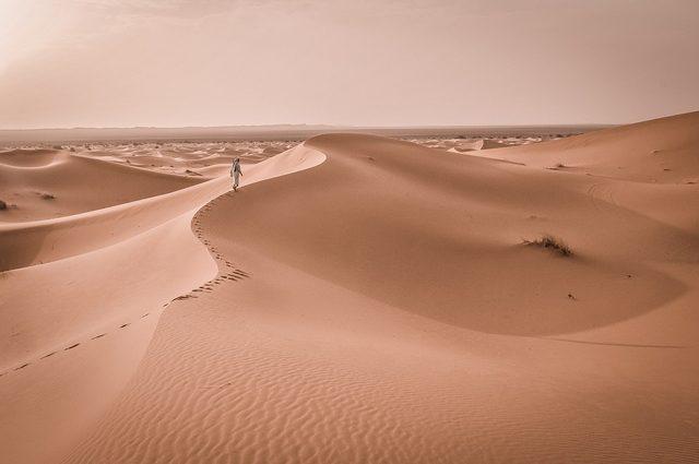 Pioggia nel Sahara, il deserto trasformato in una valle verde per dare energia a tutto il mondo