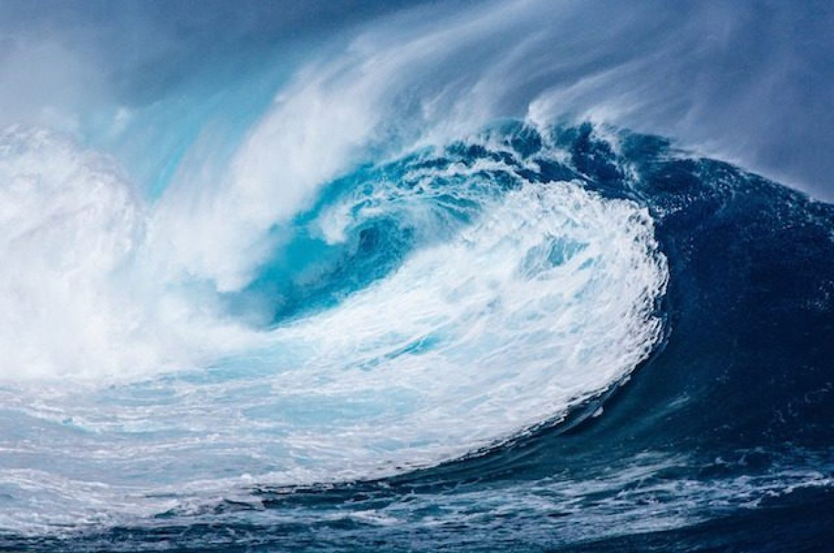 b3fa4c11db0 Tsunami