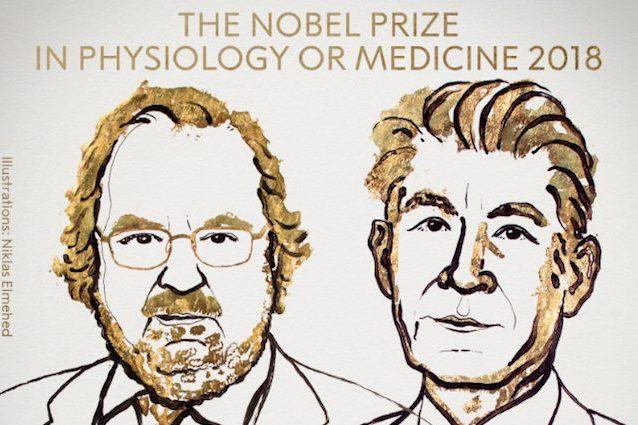 Chi sono i Nobel per la medicina James Allison e Tasuku Honjo