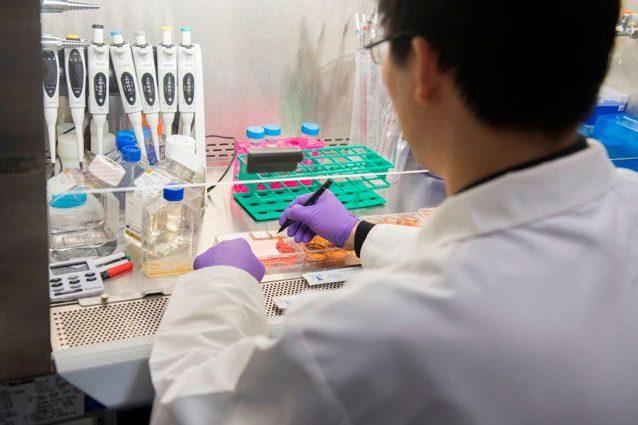 """Misteriosa polmonite in Cina, l'esperto: """"Preoccupazione, ma"""