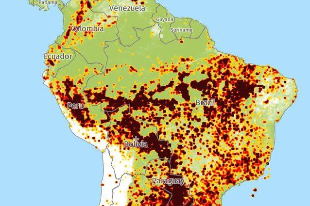 coronavirus cartina