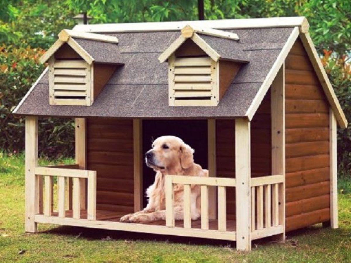 Animali Di Plastica Da Giardino.Migliori Cucce Per Cani Da Interno O Da Esterno Del 2020